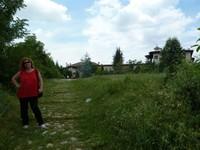 2011-06-15_11-50-47_klein